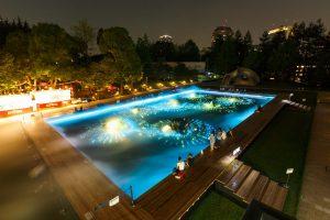 光と霧のデジタルアート庭園 / Digital Art Garden
