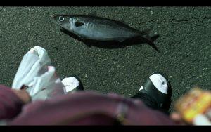 焼肉きんぐ「魚群」篇